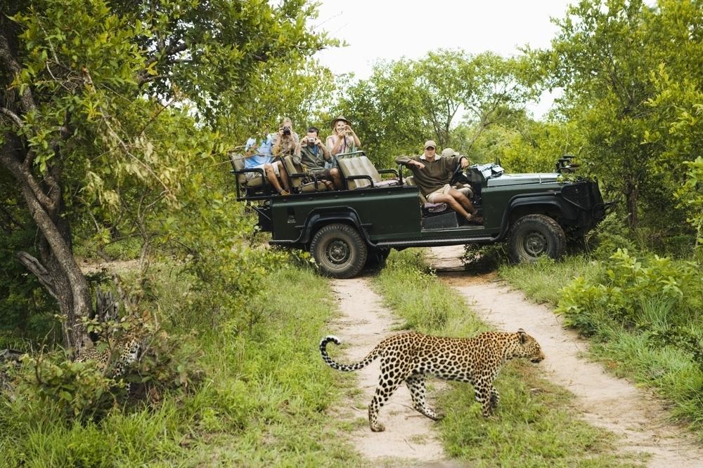 Life Nature Safari bush tours